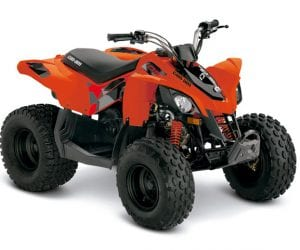Can-Am DS90 2020